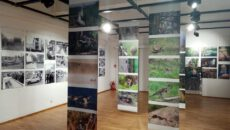 http://muzeumbytow.pl/wp-content/uploads/2020/03/kazik-1-230x130.jpg